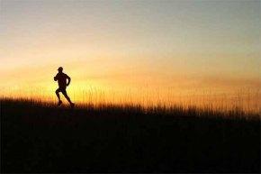 Berlari Tanpa Henti, Menulis DenganDisiplin