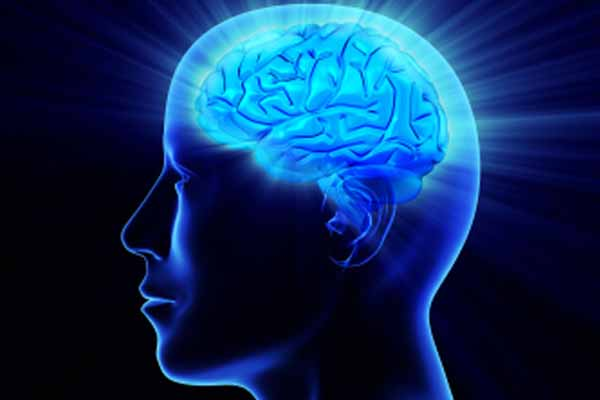 Gambaran Yang Ada Di Otak